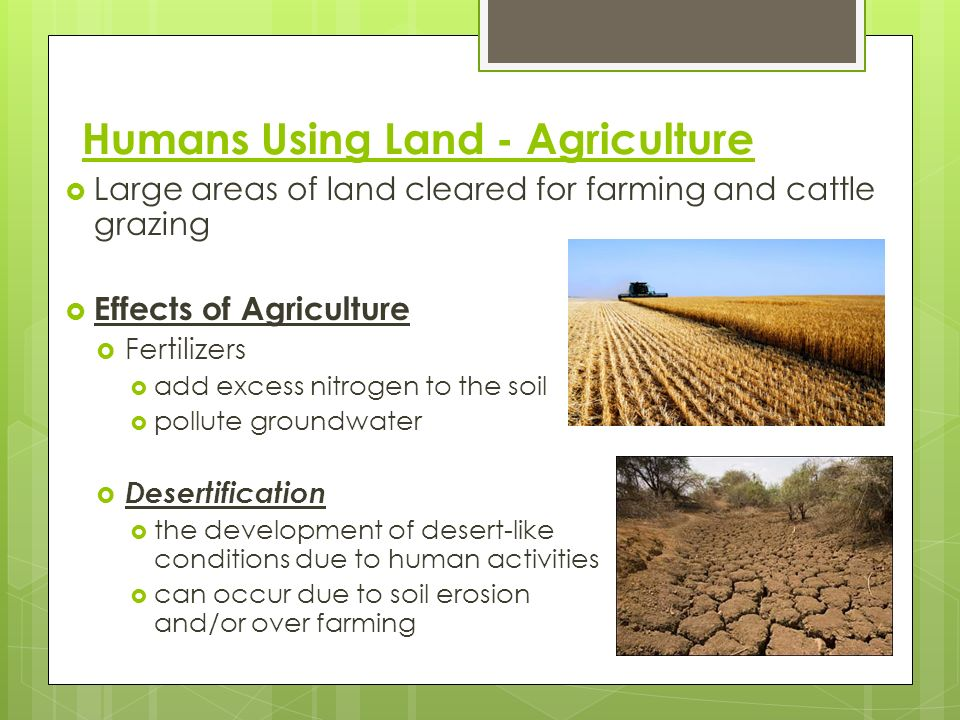 Humans Using Land - Agriculture