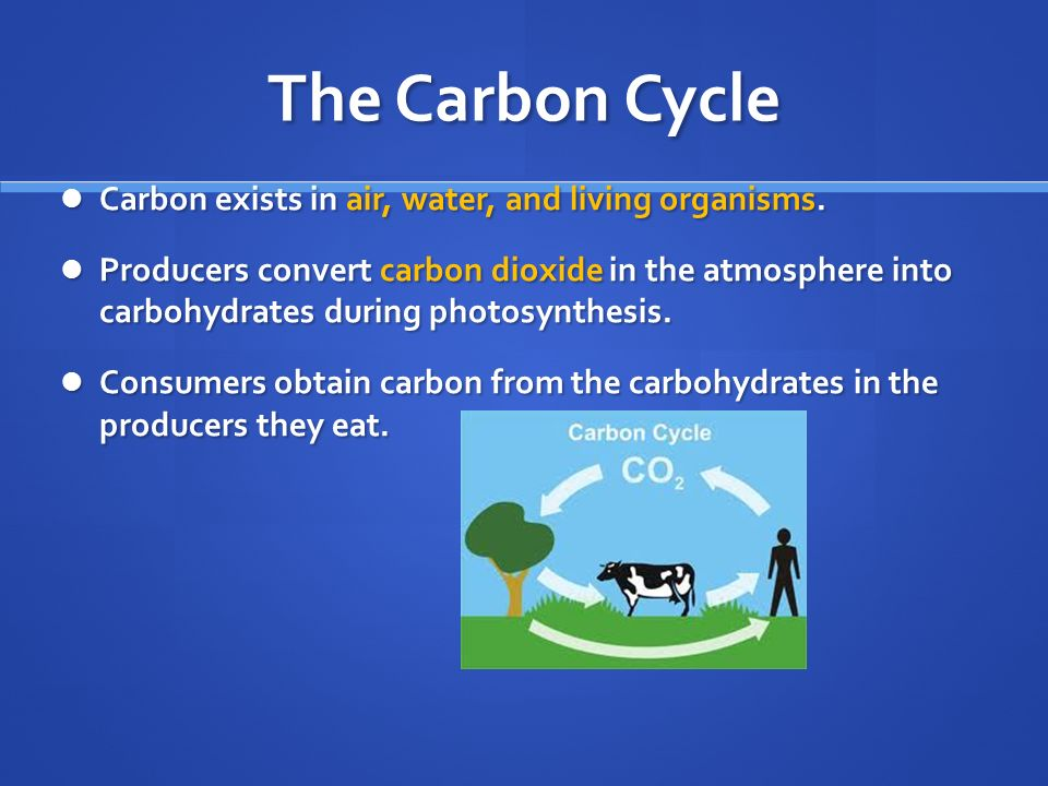 The Carbon Cycle Carbon exists in air, water, and living organisms.
