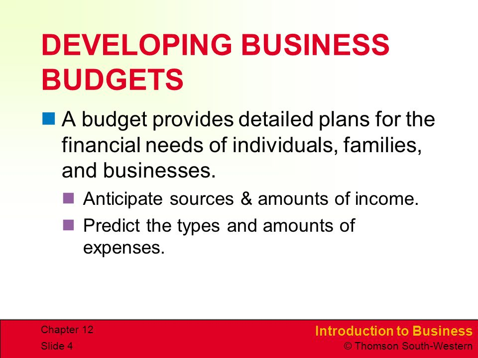 DEVELOPING BUSINESS BUDGETS