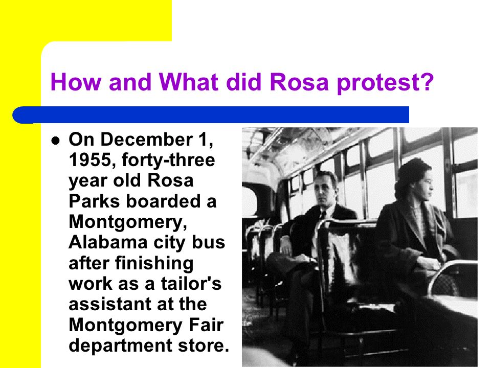 How and What did Rosa protest