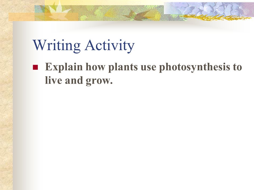Writing Activity Explain how plants use photosynthesis to live and grow.