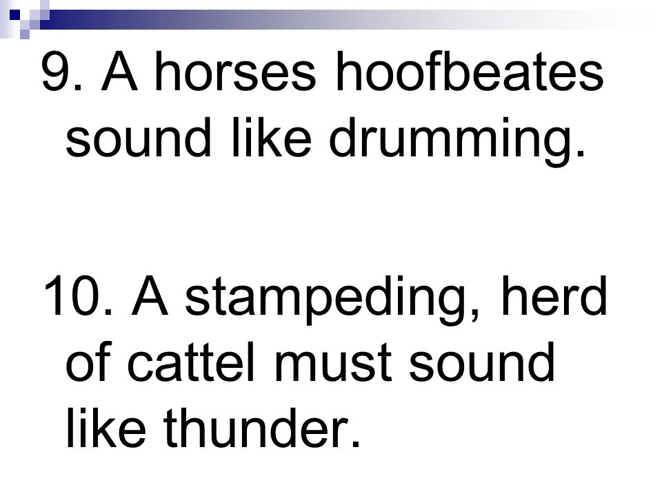 9. A horses hoofbeates sound like drumming.