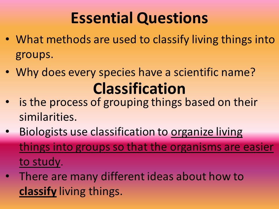 Essential Questions Classification