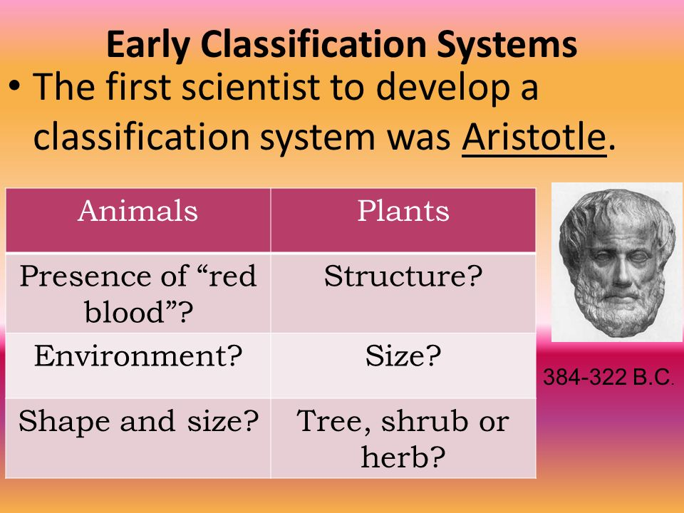 Early Classification Systems