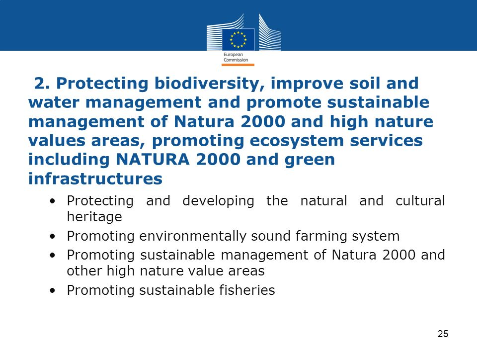 2. Protecting biodiversity, improve soil and water management and promote sustainable management of Natura 2000 and high nature values areas, promoting ecosystem services including NATURA 2000 and green infrastructures