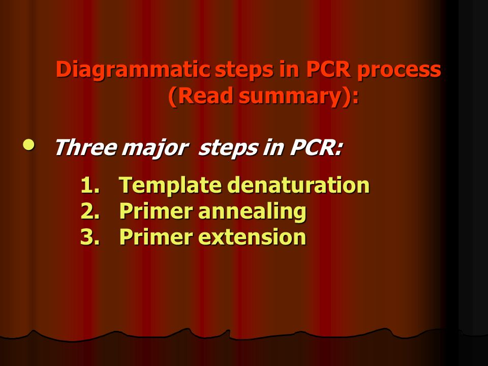 Diagrammatic steps in PCR process (Read summary):