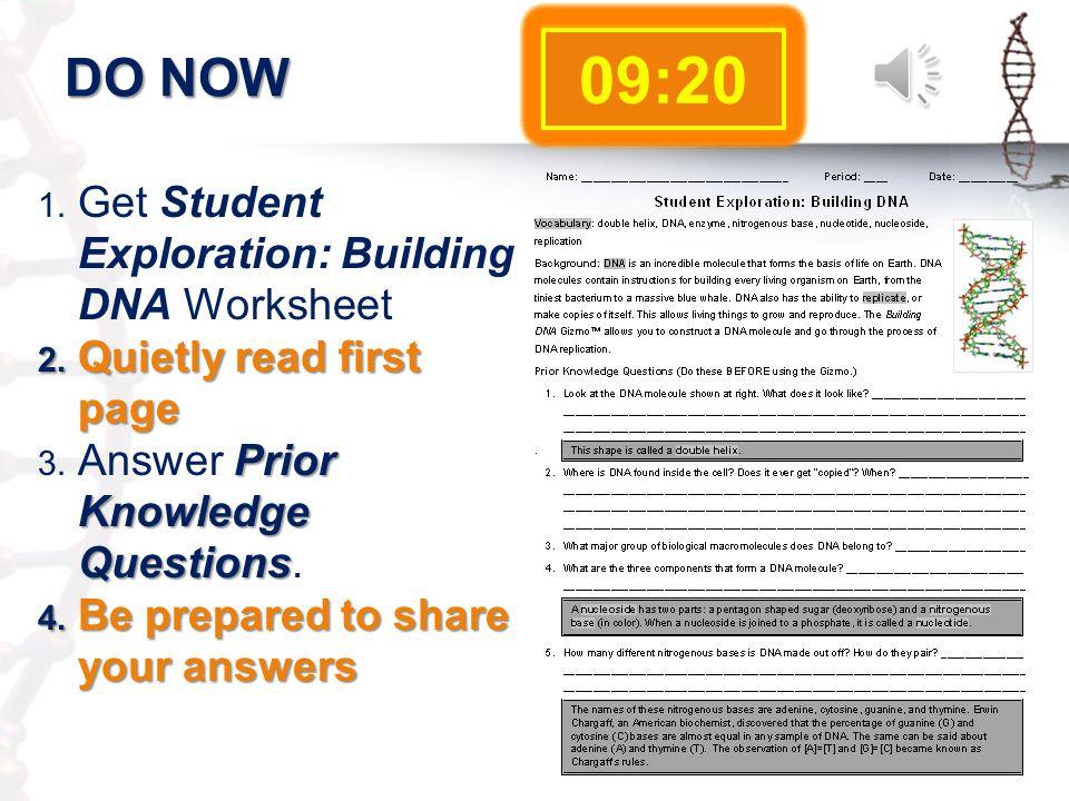 Dna replication worksheet 21