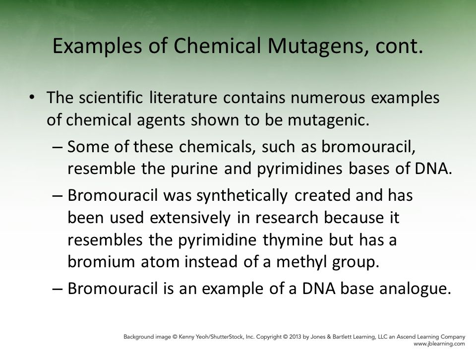 Chemical Induced Mutagenesis Ppt Video Online Download