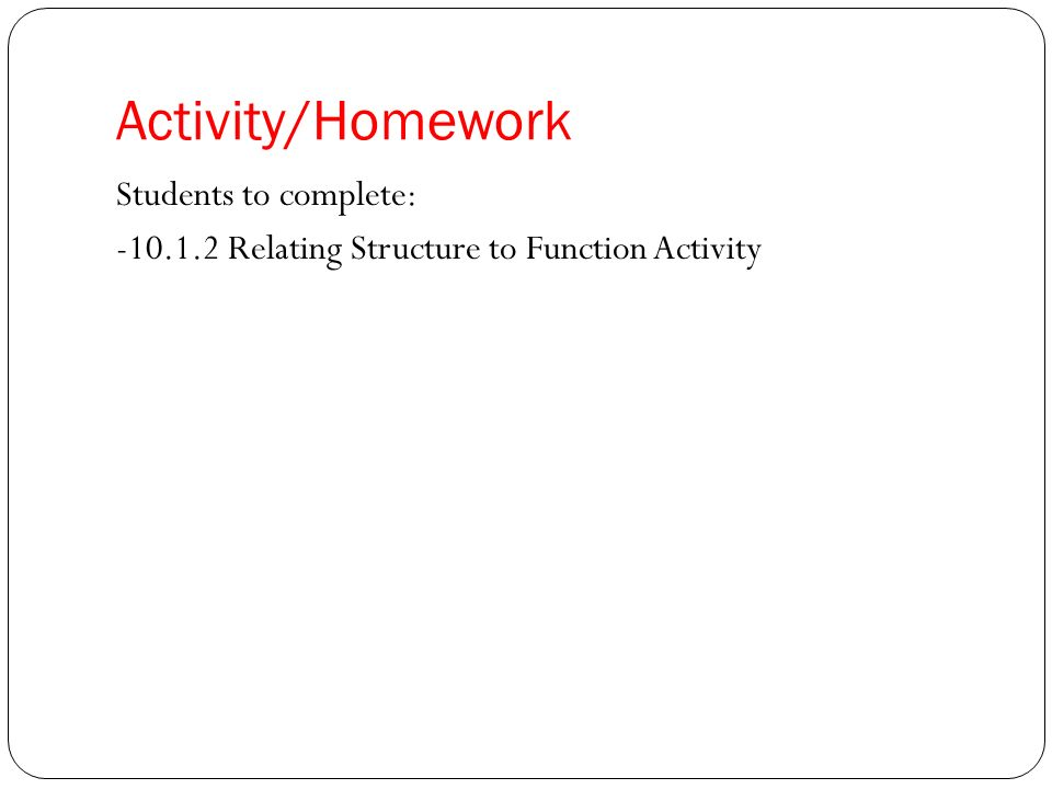 Activity/Homework Students to complete: Relating Structure to Function Activity