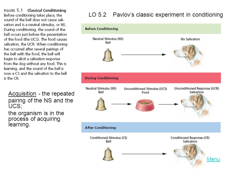 LO 5.2 Pavlov's classic experiment in conditioning