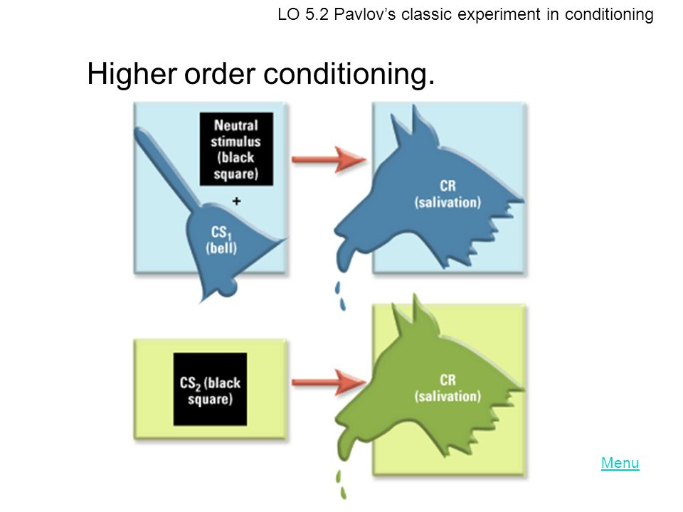 Higher order conditioning.