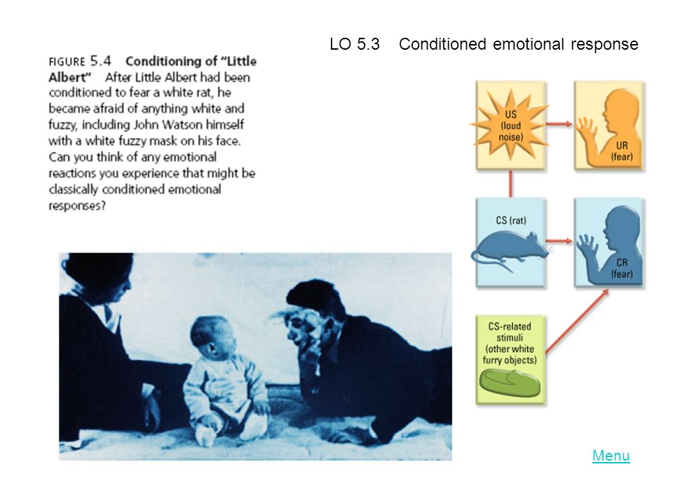 LO 5.3 Conditioned emotional response