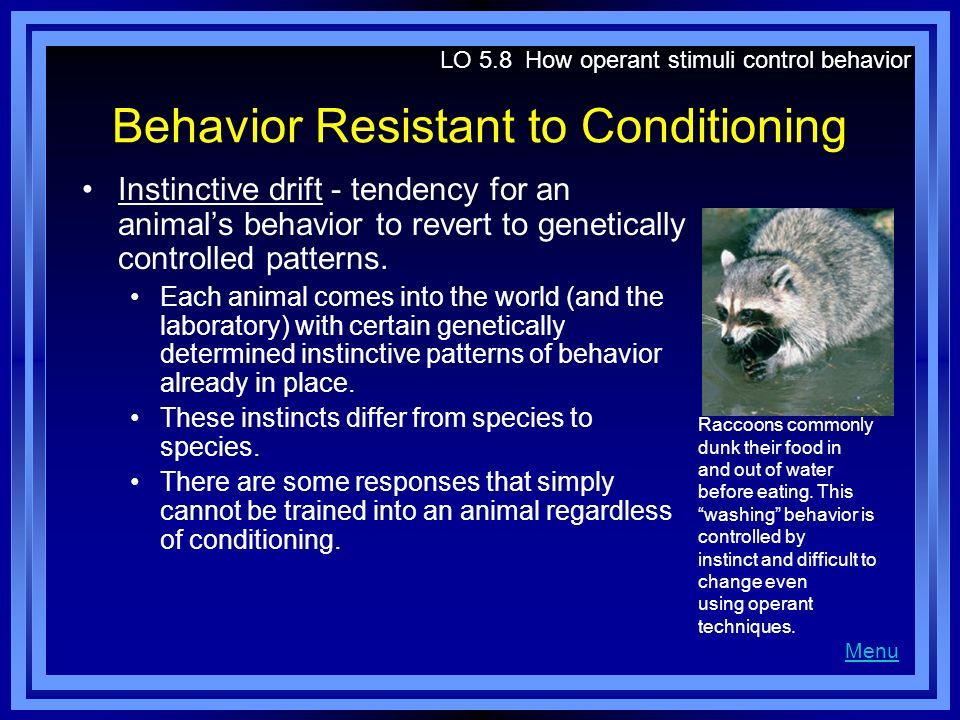 Behavior Resistant to Conditioning