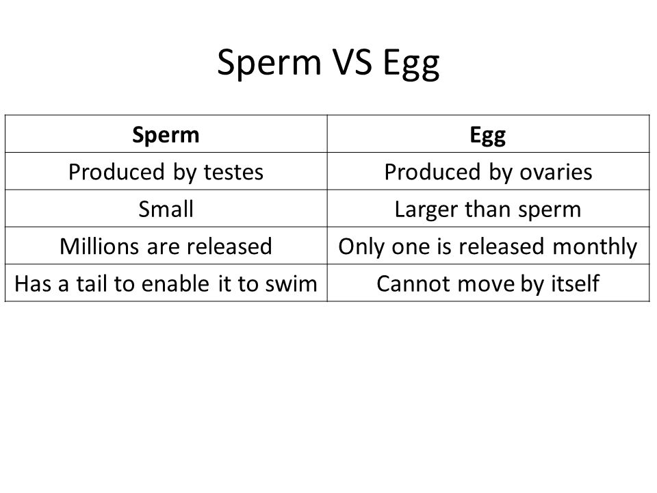 And production sperm egg about Truth