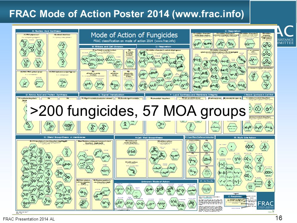 fungicide amount of resistance action committee category essay