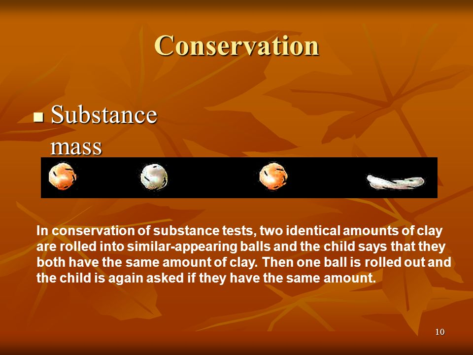 Conservation Substance mass