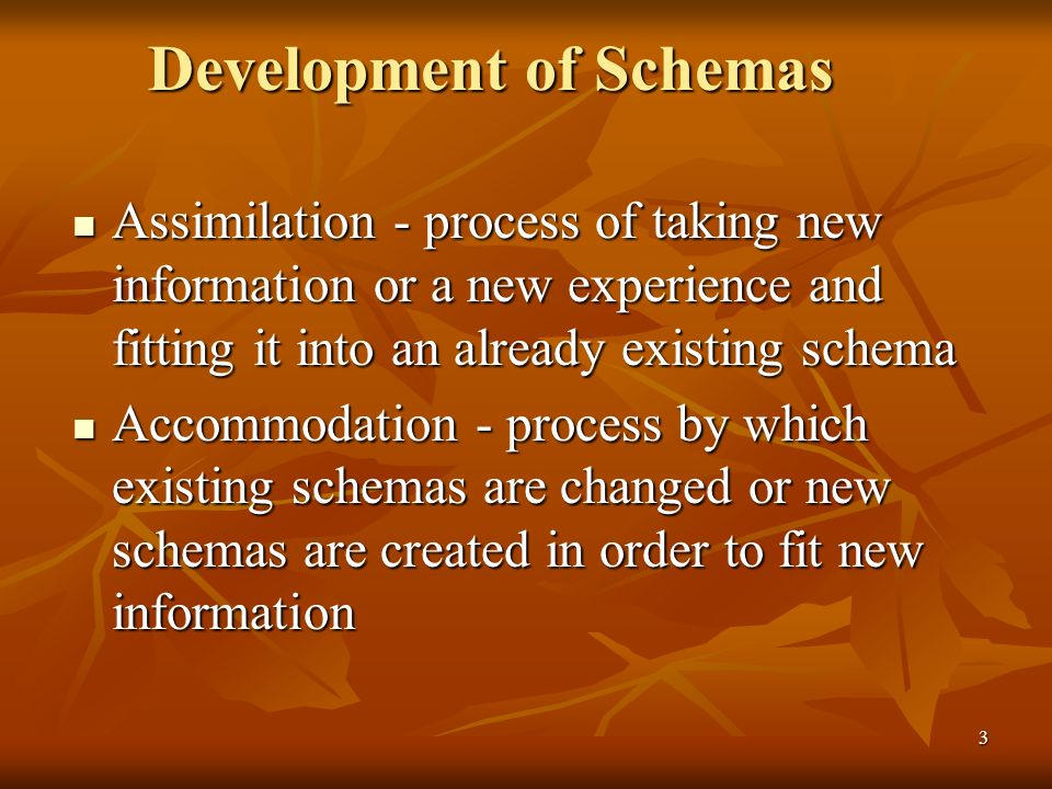 Development of Schemas