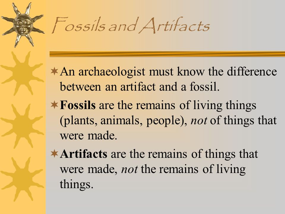 Fossils and Artifacts An archaeologist must know the difference between an artifact and a fossil.