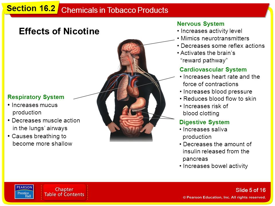Section 16 2 Chemicals in Tobacco Products Objectives - ppt
