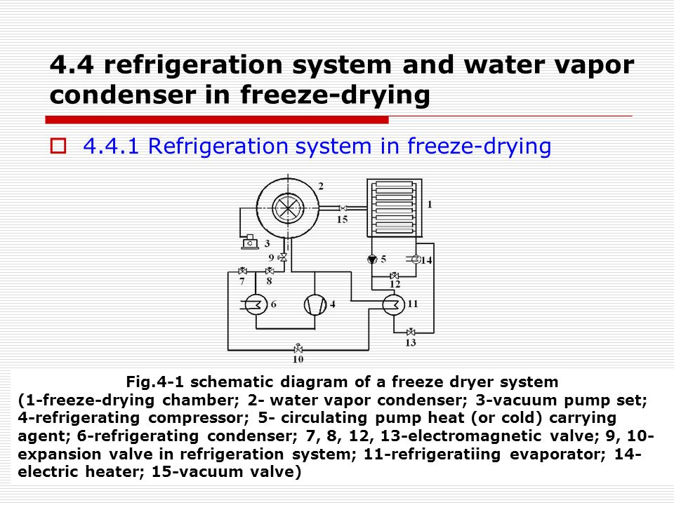 Chapter 4 Equipment of Freeze-drying - ppt video online download