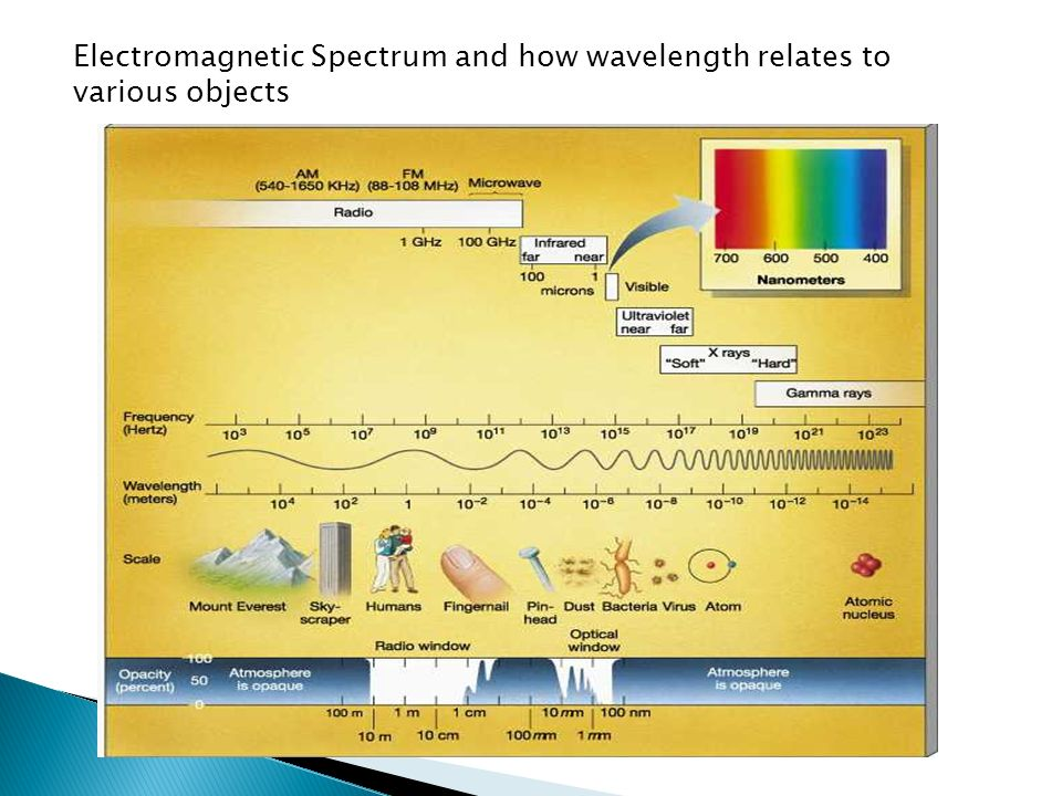 Electromagnetic Spectrum and how wavelength relates to various objects