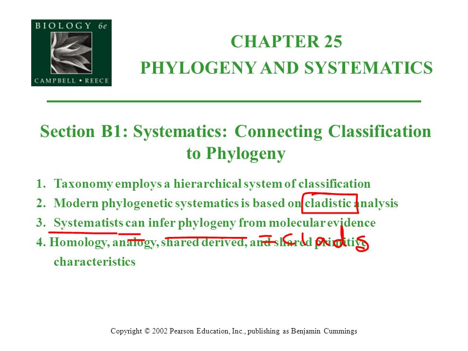 ap bio ch 25 phylogeny and systematics ppt download rh slideplayer com Phylogenetic Systematics Cladistics and Evolutionary Systematics