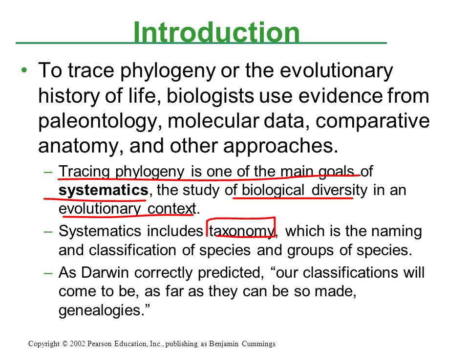 ap bio ch 25 phylogeny and systematics ppt download rh slideplayer com Taxonomy vs Phylogeny Cladistics vs Phylogeny