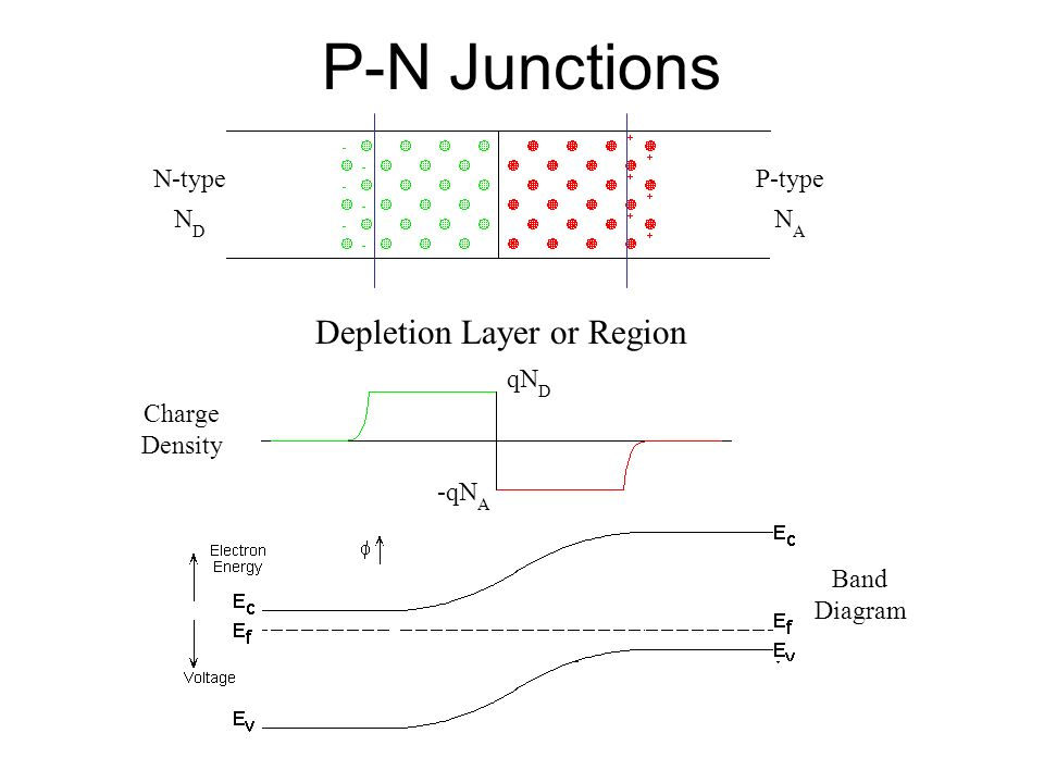 P-N Junctions Depletion Layer or Region N-type ND P-type NA qND Charge