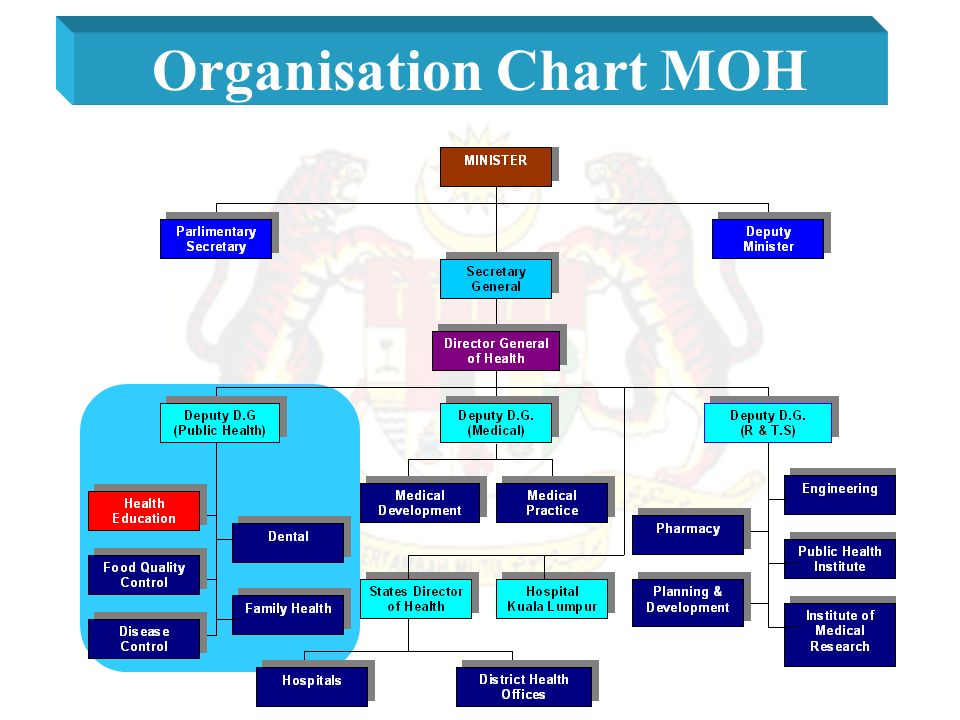 Health Education Division Ministry Of Health Malaysia Ppt Video Online Download