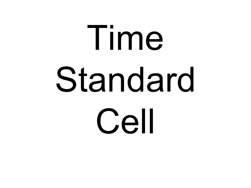 Time Standard Cell