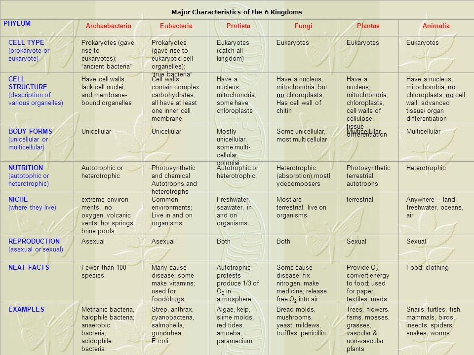 Major Characteristics Of The 6 Kingdoms