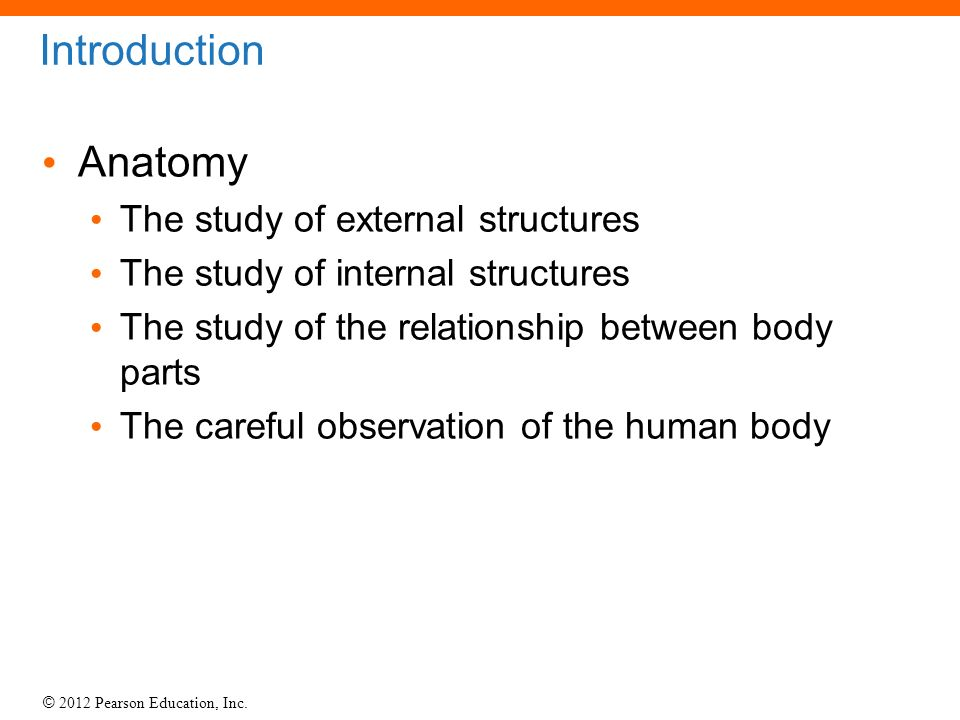 1 Foundations: An Introduction to Anatomy. - ppt download