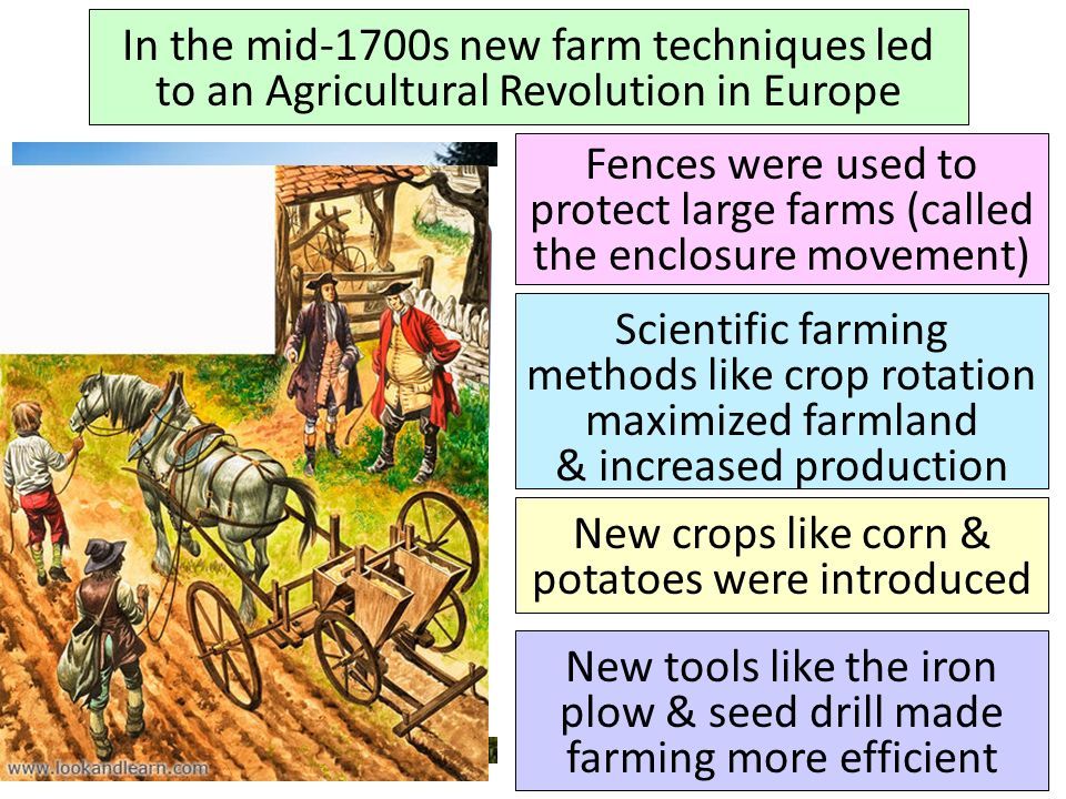 New crops like corn & potatoes were introduced