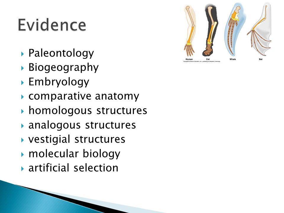Ap Biology Exam Review Evolution Ppt Download