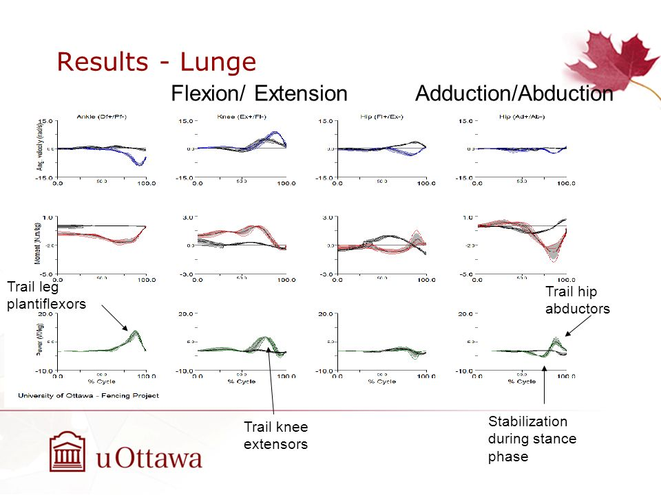 Results - Lunge Flexion/ Extension Adduction/Abduction