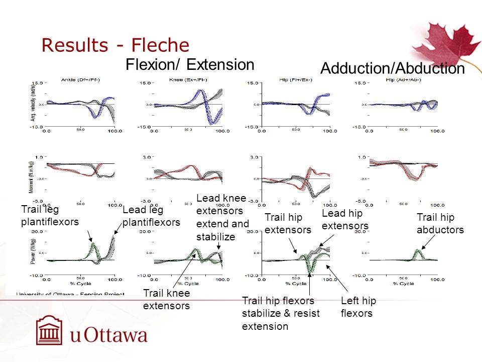 Results - Fleche Flexion/ Extension Adduction/Abduction