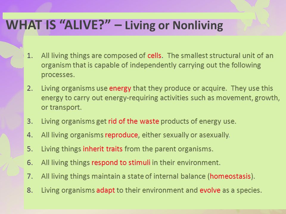 Superbe WHAT IS ALIVE U2013 Living Or Nonliving