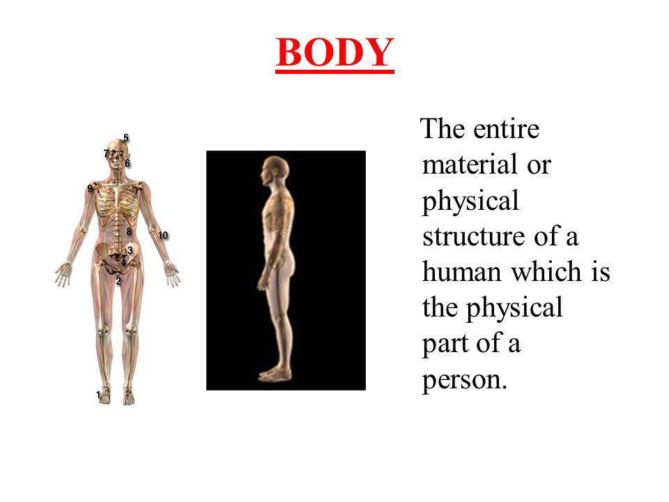 BODY The entire material or physical structure of a human which is the physical part of a person.