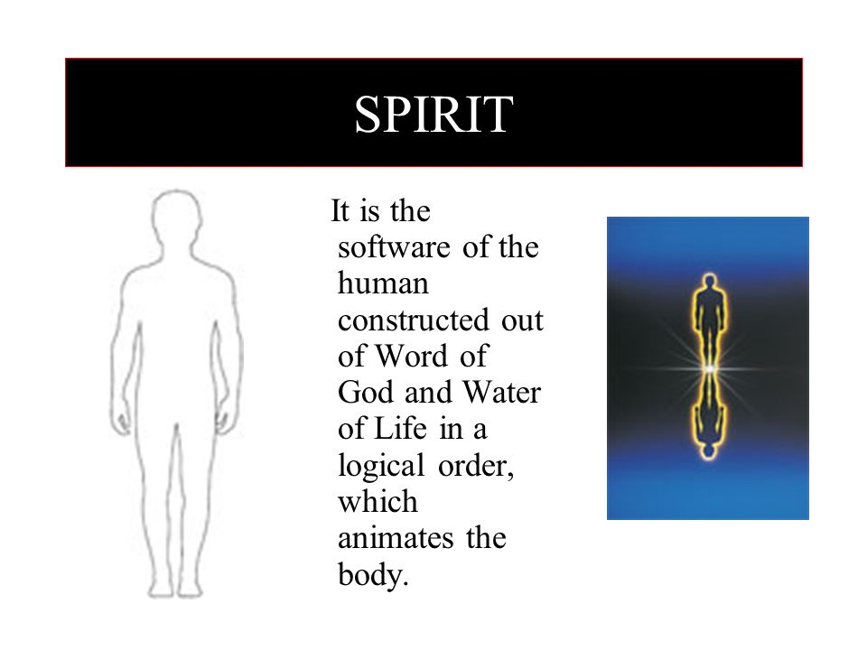 SPIRIT It is the software of the human constructed out of Word of God and Water of Life in a logical order, which animates the body.
