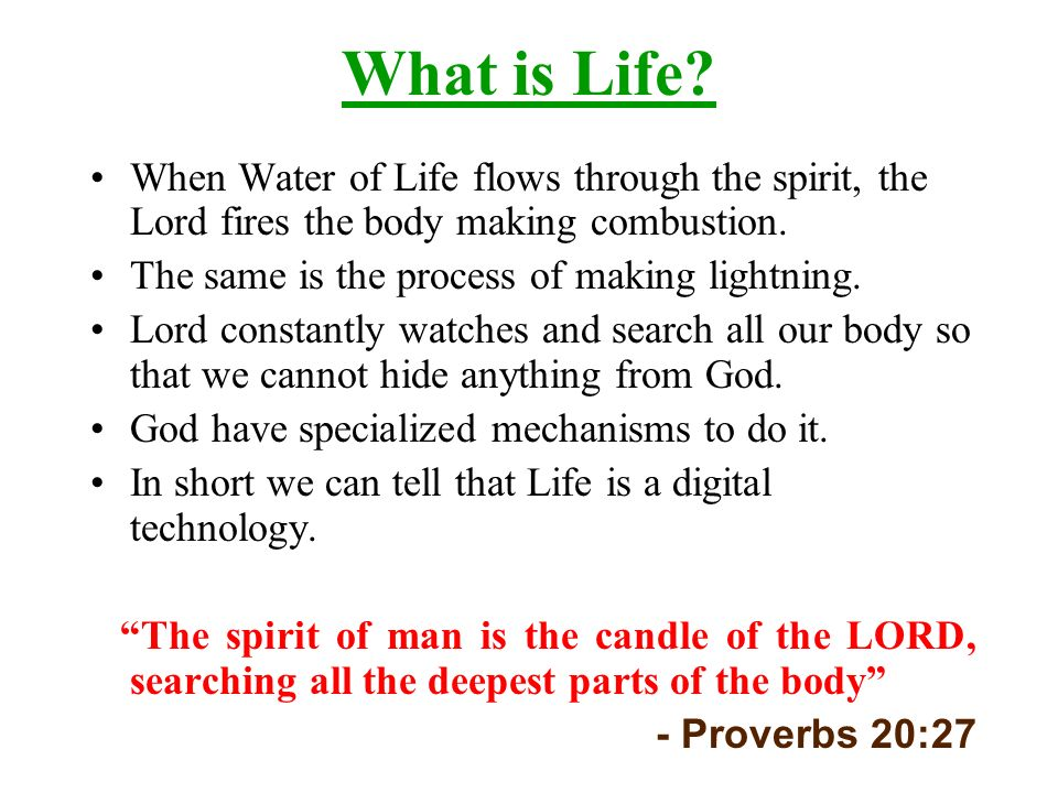 What is Life When Water of Life flows through the spirit, the Lord fires the body making combustion.