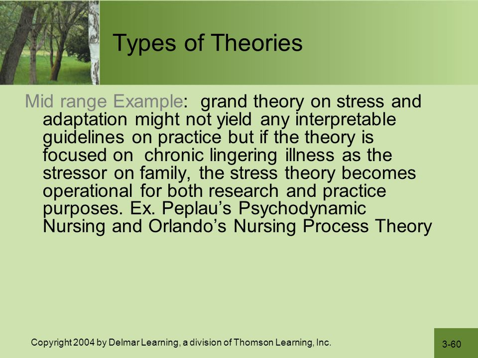 How to choose a theory for nursing practice nursing education expert.