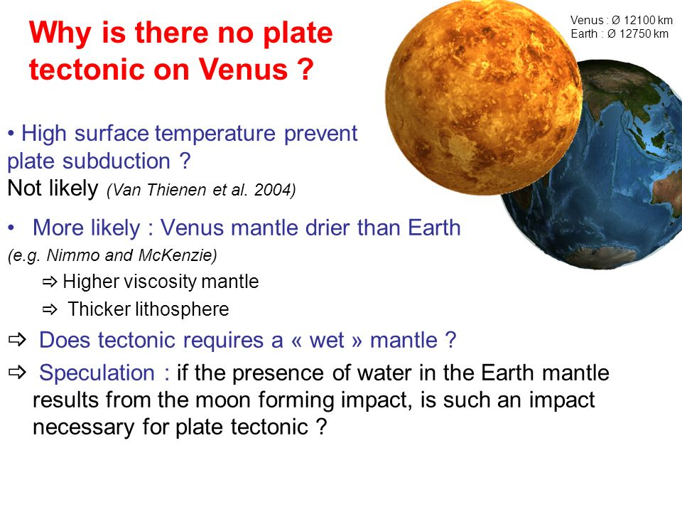 Why is there no plate tectonic on Venus