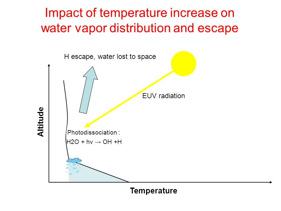 Impact of temperature increase on water vapor distribution and escape