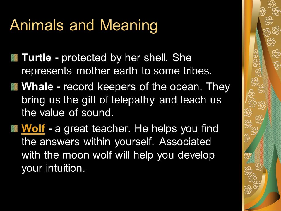 Touching Spirit Bear Totem Poles Ppt Video Online Download