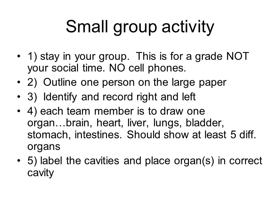 Small group activity 1) stay in your group. This is for a grade NOT your social time. NO cell phones.
