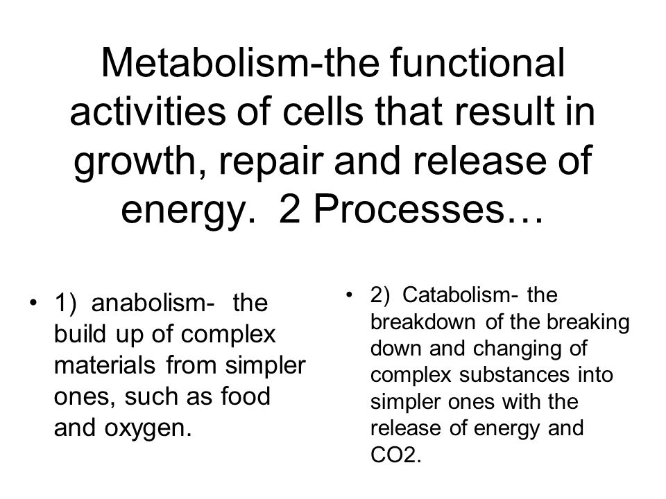 Metabolism-the functional activities of cells that result in growth, repair and release of energy. 2 Processes…