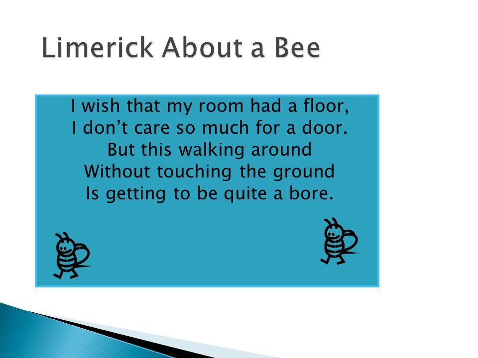 Limerick About a Bee I wish that my room had a floor,