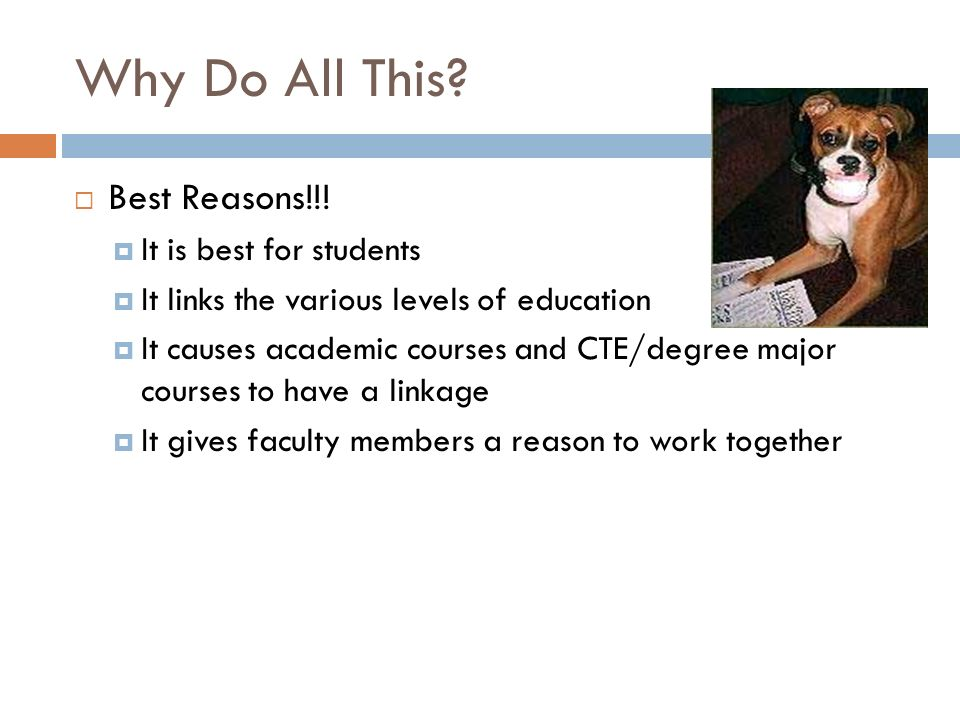 Why Do All This Best Reasons!!! It is best for students