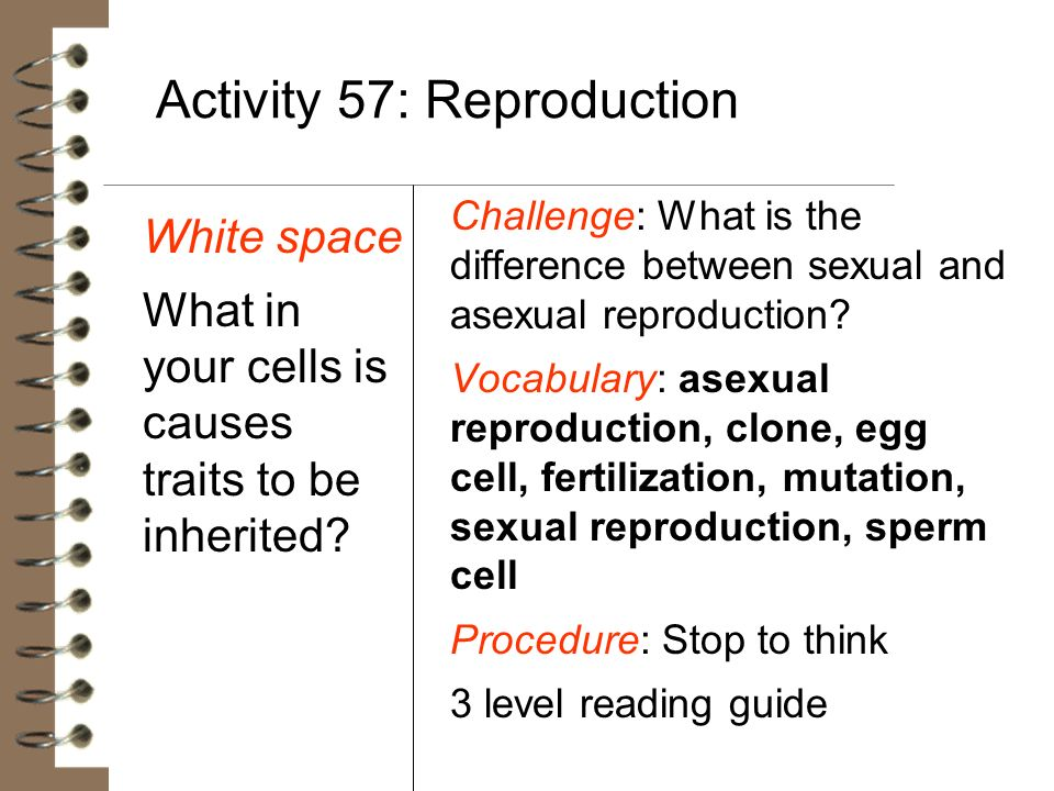 Activity 57: Reproduction