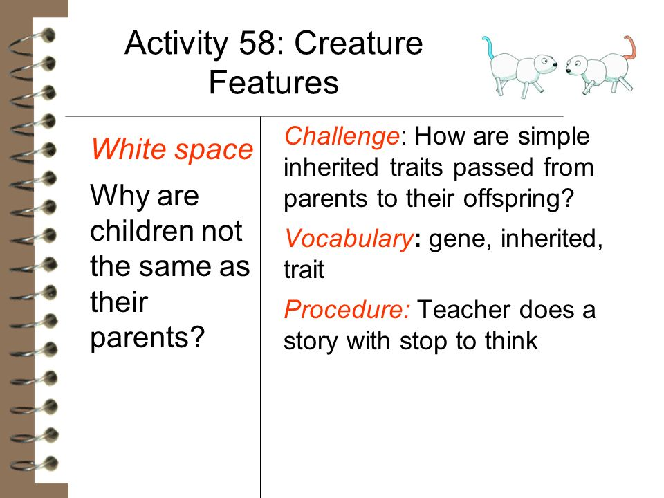 Activity 58: Creature Features